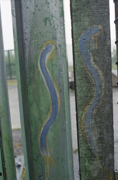 Snake sign (Znak węża), fot. Paula Allen